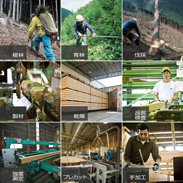 山長商店さんの植林からプレカット加工までの一貫事業体制
