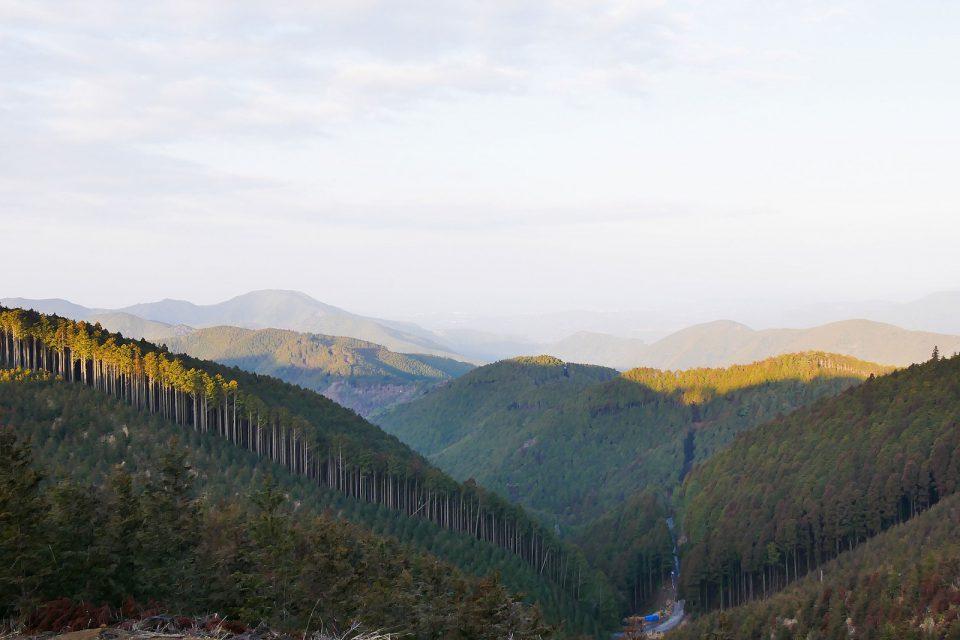 山から建築へつながる地域循環を(2)