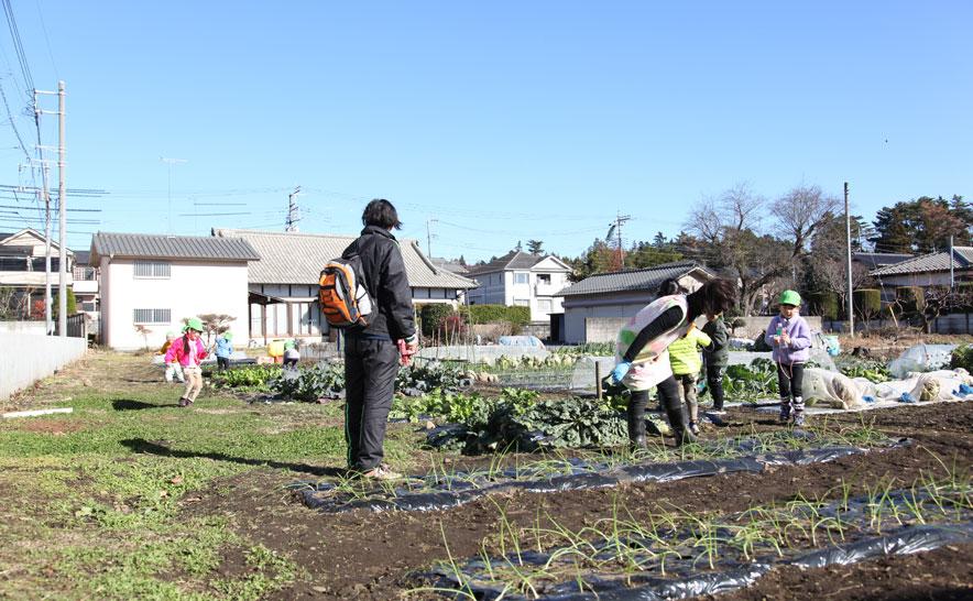 園から徒歩5分ほどのところにある畑。いちご、ブロッコリー、玉ねぎに水をあげる。