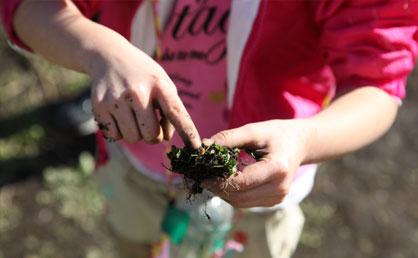 昆虫の幼虫や霜柱を見つける子も。